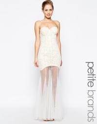 Кружевное платье-бандо с прозрачной юбкой Jarlo Petite Sydney