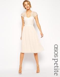 Платье миди с фигурным кружевом ASOS PETITE - Телесный