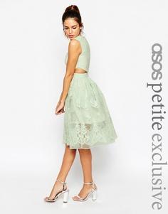 Платье для выпускного с цветочной вышивкой и вырезами ASOS PETITE