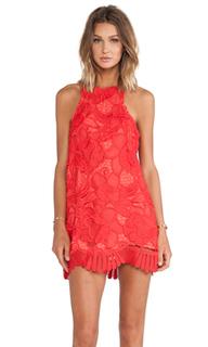 Летнее кружевное мини платье caspian - Lovers + Friends