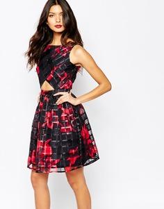 Короткое приталенное платье с вырезами Elise Ryan