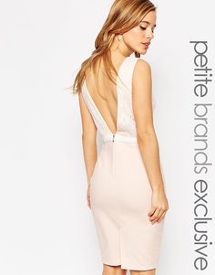 Платье-футляр с глубоким вырезом сзади и бантиком Paper Dolls Petite