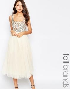 Тюлевое платье для выпускного с пайетками на топе Little Mistress Tall
