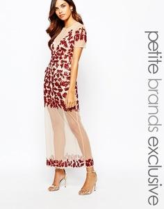 Платье макси с цветочной отделкой и прозрачным подолом Maya Petite