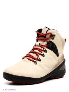 Бежевые Ботинки Covani