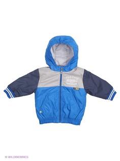 Куртки Wojcik