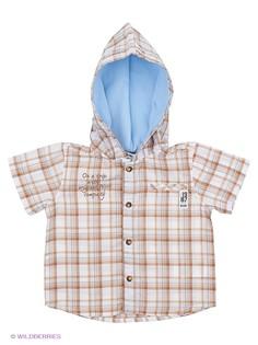 Рубашки Wojcik