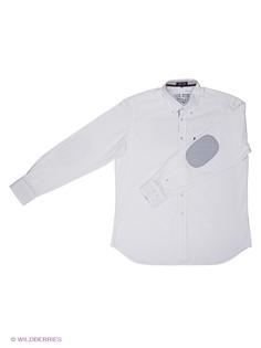 Рубашки Sail Exp