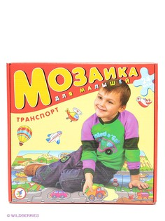 Пазлы Дрофа-Медиа