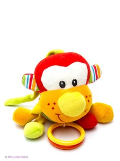 Развивающие игрушки Amico