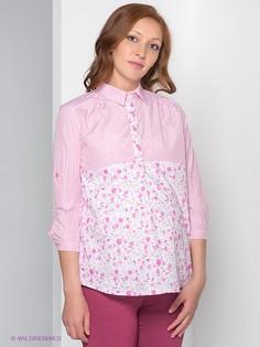 Рубашки Nuova Vita