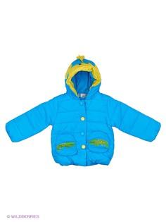 Куртки Happy Bear