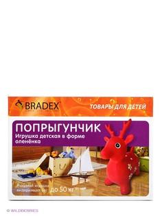 Развивающие игрушки BRADEX