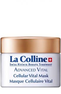 Восстанавливающая маска с клеточным комплексом La Colline