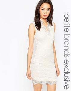 Кружевное облегающее платье с глубоким вырезом Lipstick Boutique Petite