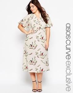 Платье миди с птичьим принтом ASOS CURVE - Мульти