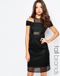 Сетчатое платье с открытыми плечами Studio 75 Tall Zenia - Черный