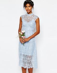 Голубое кружевное платье с цветочным узором Body Frock Wedding - Кашемировый синий