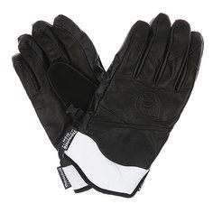 Перчатки сноубордические Picture Organic Source Black