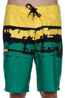 Пляжные мужские шорты Analog Dorado Brdshort Green