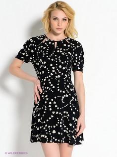 Платья AX Paris