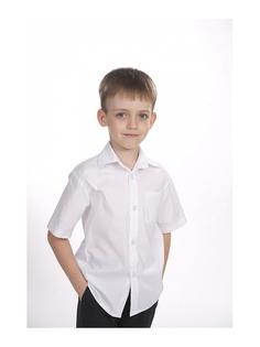Рубашки SEMICVET
