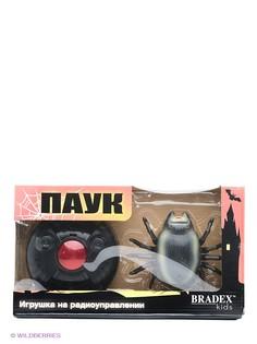 Радиоуправляемые игрушки BRADEX
