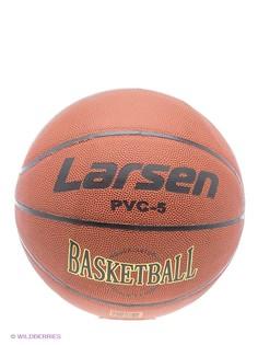Баскетбольные Larsen