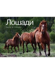 Книги Издательство КоЛибри