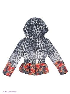 Куртки DIALINI