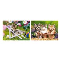 """Набор пазлов """"Котята в саду"""", 165*240 деталей, Castorland"""