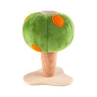 Апельсиновое дерево,  AnaMalz