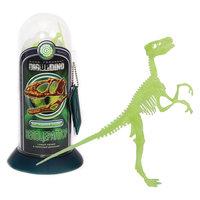 Раскопки: Велоцераптор (Светящийся скелет динозавра - быстрого охотника)
