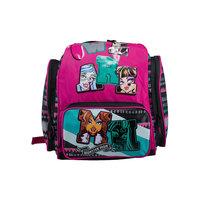Эргономический рюкзак, Monster High Академия групп