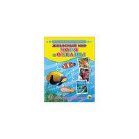 """Обучающие карточки """"Животный мир. Моря и океаны"""" Проф Пресс"""