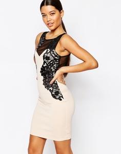 Платье-футляр с сетчатыми вставками и кружевной аппликацией Lipsy