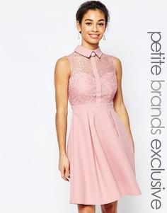 Кружевное платье для выпускного с воротником Paper Dolls Petite - Blush