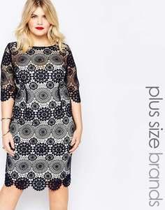 Кружевное платье‑футляр Paper Dolls Plus - Темно-синий