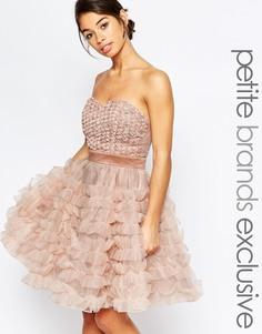 Платье для выпускного с цветами True Decadence Petite - Розовый