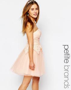 Платье для выпускного с кружевным лифом-бандо Chi Chi London Petite - Нежно-розовый