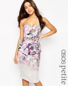 Платье миди в стиле бандо с цветочным принтом ASOS PETITE Premium - Мульти