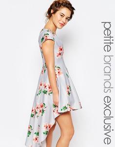 Платье мини для выпускного со сплошным цветочным принтом True Decadence Petite - Мульти