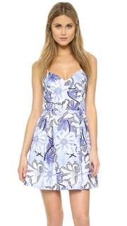 Платье Jacquel Parker
