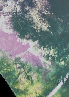 Японская штора Озеро (1 шт.), Шина с лентой велкро (зеленый/лиловый) Bonprix