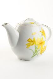 Чайник Briswild