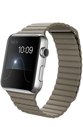 Apple Watch Stainless Steel Case with Leather Loop Apple
