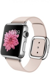 Apple Watch Stainless Steel Case with Modern Buckle Apple