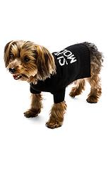 Свитер для собаки skull - 360 Sweater
