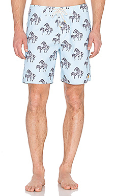Плавательные шорты zeebs - Ambsn