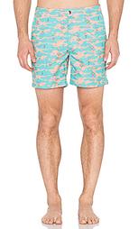 Плавательные шорты payotechute - Ambsn